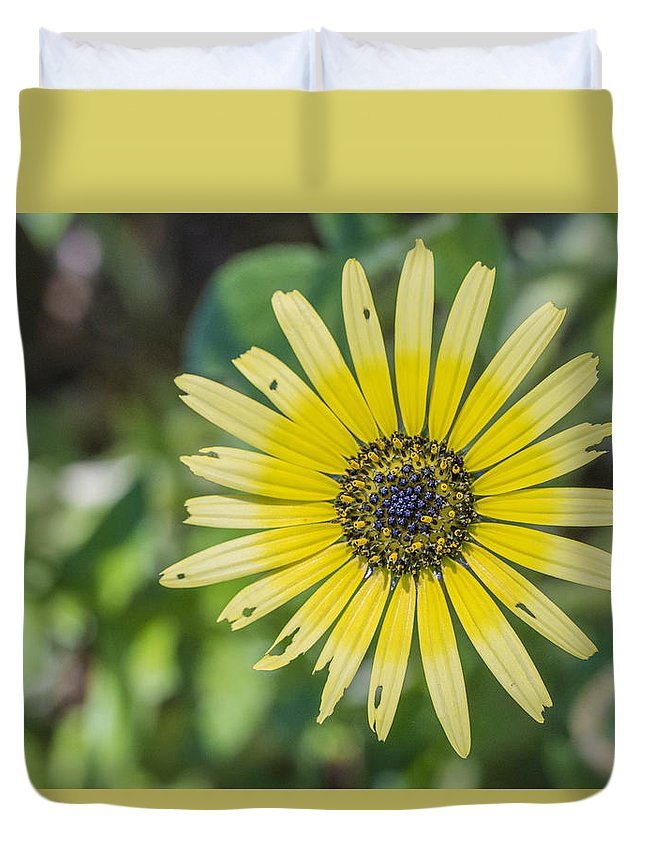 Flower Duvet Cover featuring the photograph Perfectly Flawed by Todd Scheetz