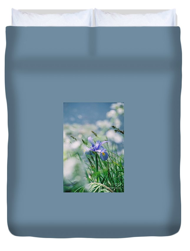 Periwinkle Duvet Cover featuring the photograph Periwinkle Iris by Nadine Rippelmeyer