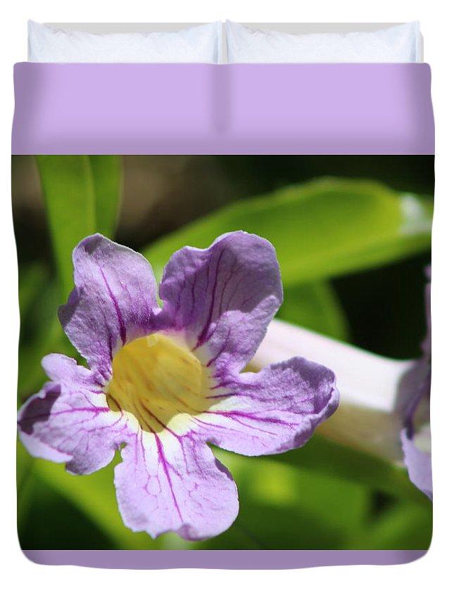 Pale Periwinkle Violet Trumpet Vine Duvet Cover featuring the photograph Periwinkle Purple Violet Trumpet Vine by Colleen Cornelius