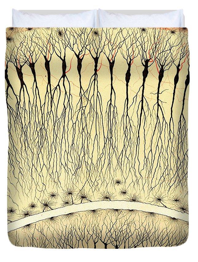 Histology Duvet Covers