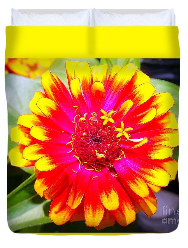 Flowers Duvet Cover featuring the photograph Petal Pop by Ed Weidman