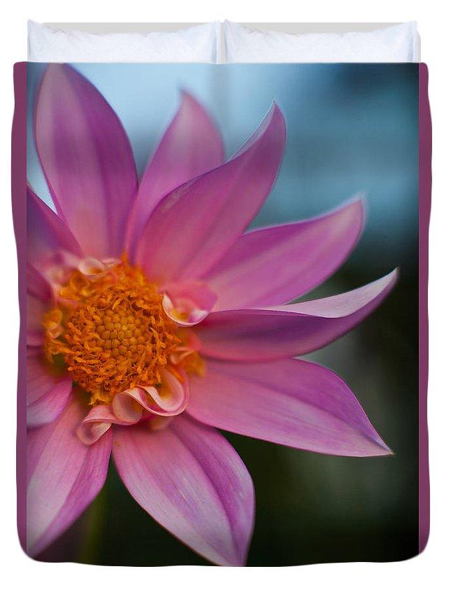 Dahlia Duvet Cover featuring the photograph Petals by Mike Reid