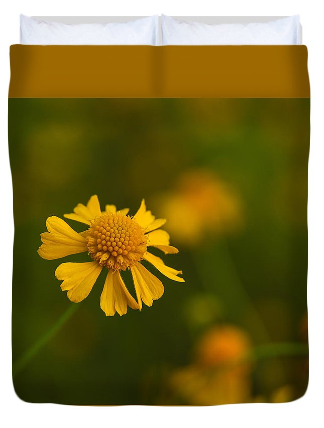Petals Duvet Cover featuring the photograph Petals Of Nature by Christopher L Thomley