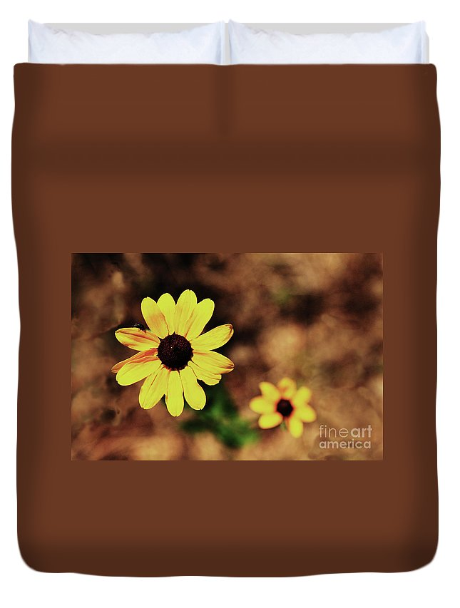 Sunflower Duvet Cover featuring the photograph Petals Stretched by Kim Henderson