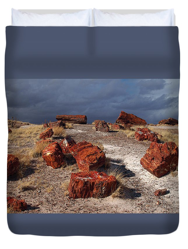 Peterson Nature Photography Duvet Cover featuring the photograph Petrified Forest National Park by James Peterson