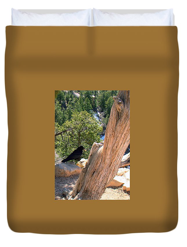 Grand Canyon Duvet Cover featuring the photograph Petrified Raven At Grand Canyon by Merja Waters