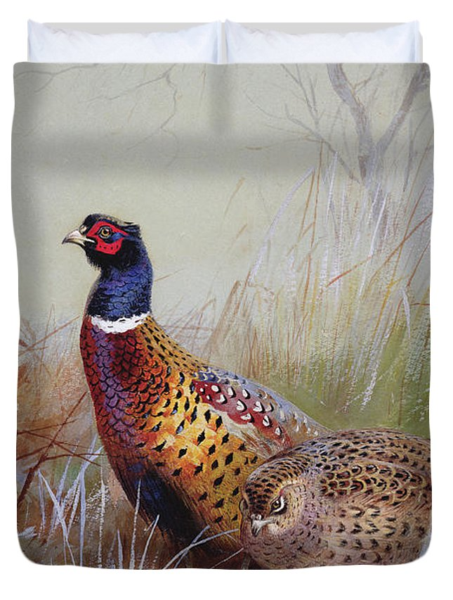 SWEN Products PHEASANT BIRD Light Switch Plate Covers