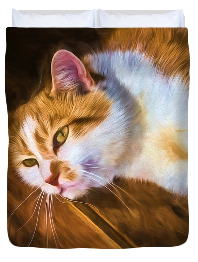 Black Brook Duvet Cover featuring the photograph Philipsburg Manor - Barn Cat Nap by Black Brook Photography