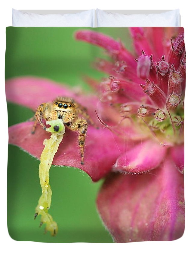 Jumping Spider Duvet Cover featuring the photograph Picnic by Michelle DiGuardi