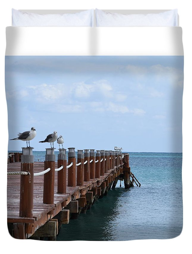 Birds Duvet Cover featuring the photograph Piers By The Ocean2 by Christina McNee-Geiger
