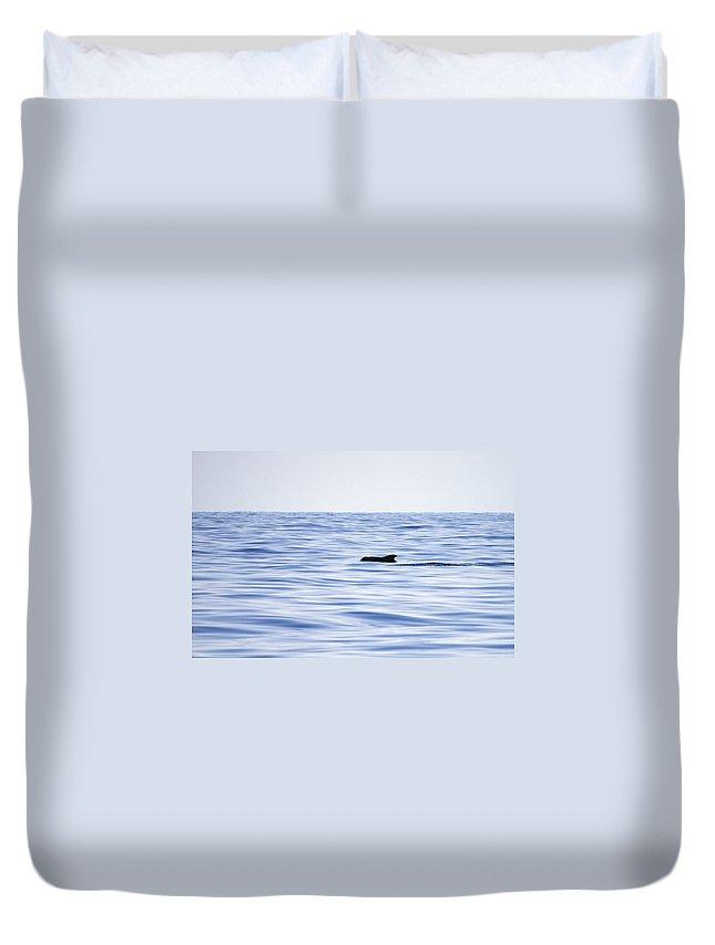 Spain Duvet Cover featuring the photograph Pilot Whales 2 by Jouko Lehto