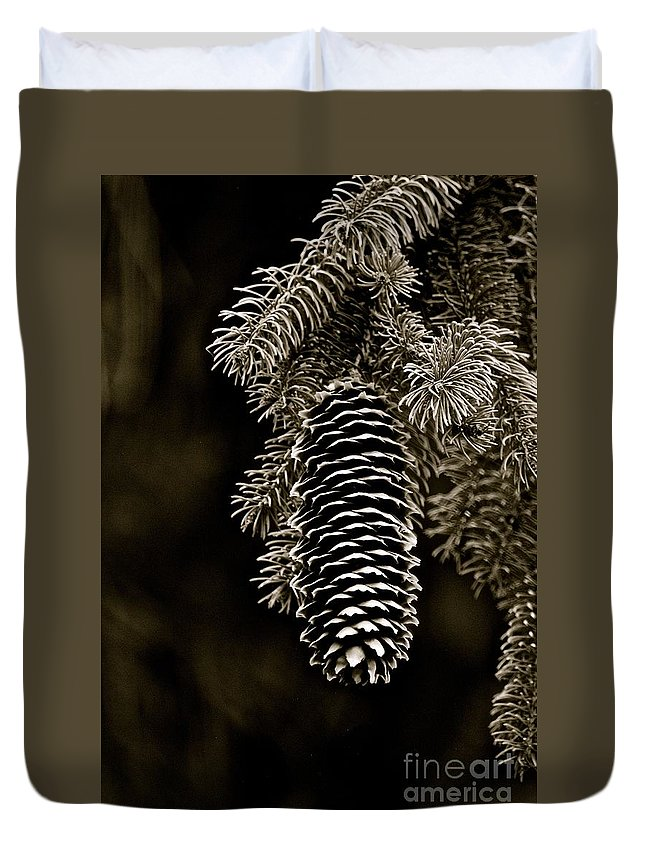 Black And White Pine Cone Duvet Cover featuring the photograph Pine Cone Bw by Christine Scott