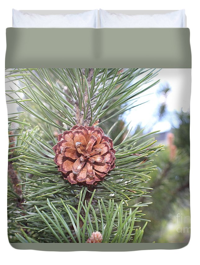 Pine Cone. Duvet Cover featuring the photograph Pine Cone. by Haniet Cordovi