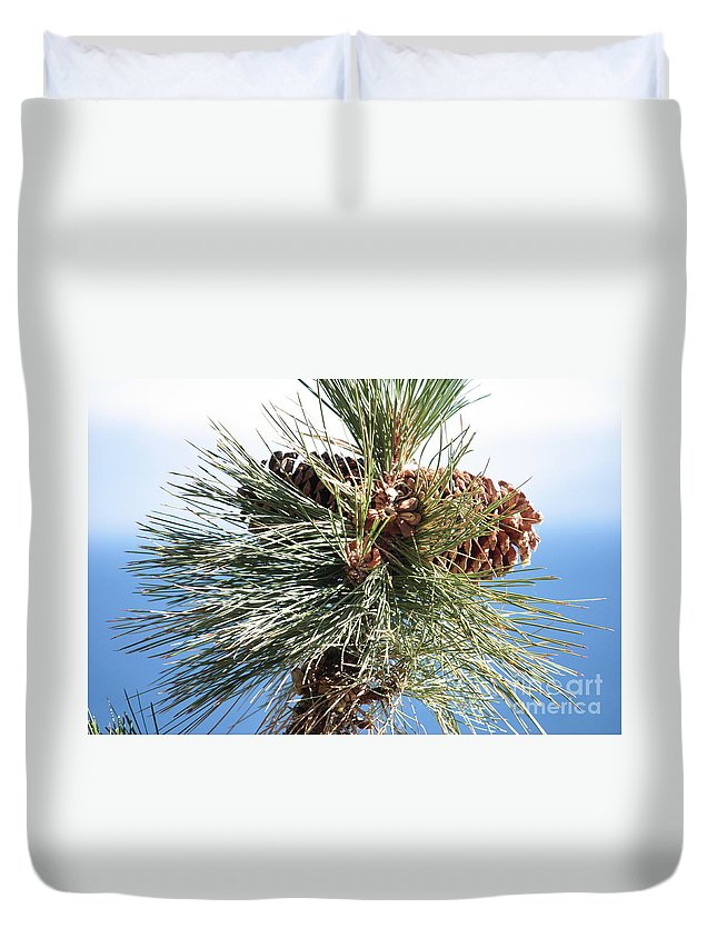 Pine Cones Duvet Cover featuring the photograph Pine Cones Over Lake Tahoe by Carol Groenen