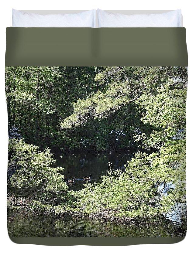 Pine Lake Duvet Cover featuring the photograph Pine Lake 391 by Joyce StJames
