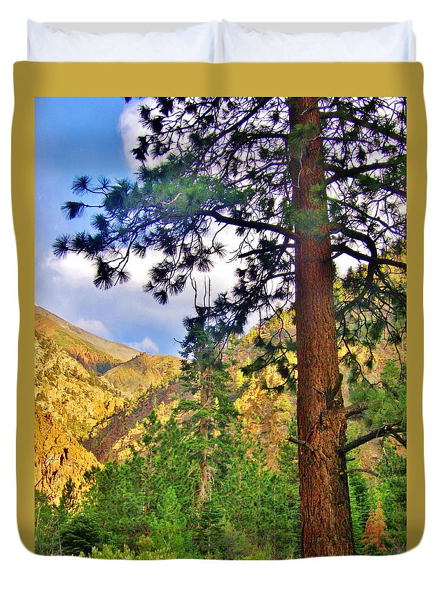 Sky Duvet Cover featuring the photograph Pine Trees by Marilyn Diaz
