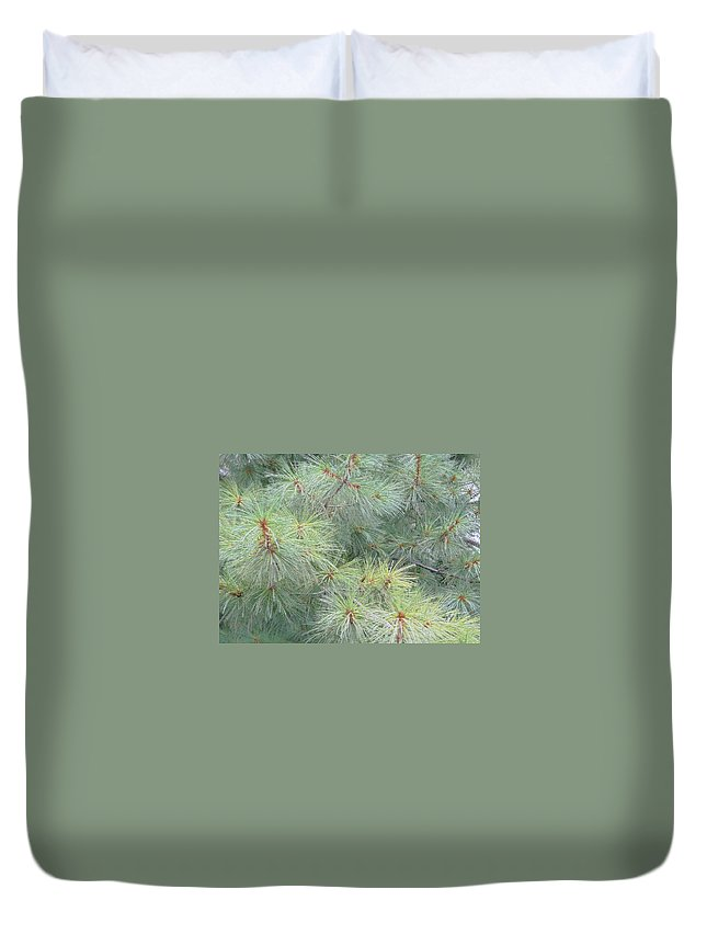 Pines Duvet Cover featuring the photograph Pines by Rhonda Barrett