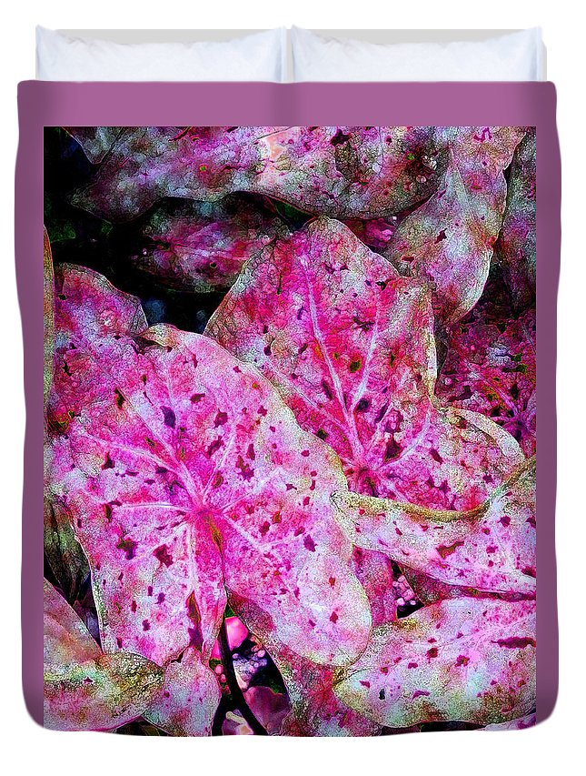 Diane Dimarco Art Duvet Cover featuring the photograph Pink Caladium by Diane DiMarco