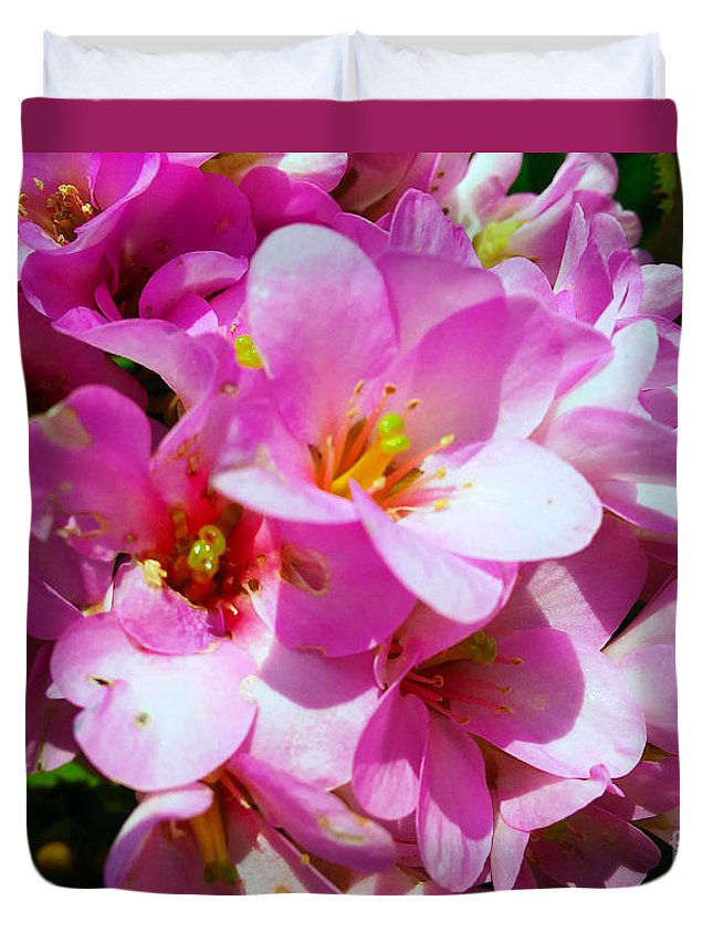Bergenia Cordifolia Duvet Cover featuring the photograph Pink And Beauty by Jasna Dragun