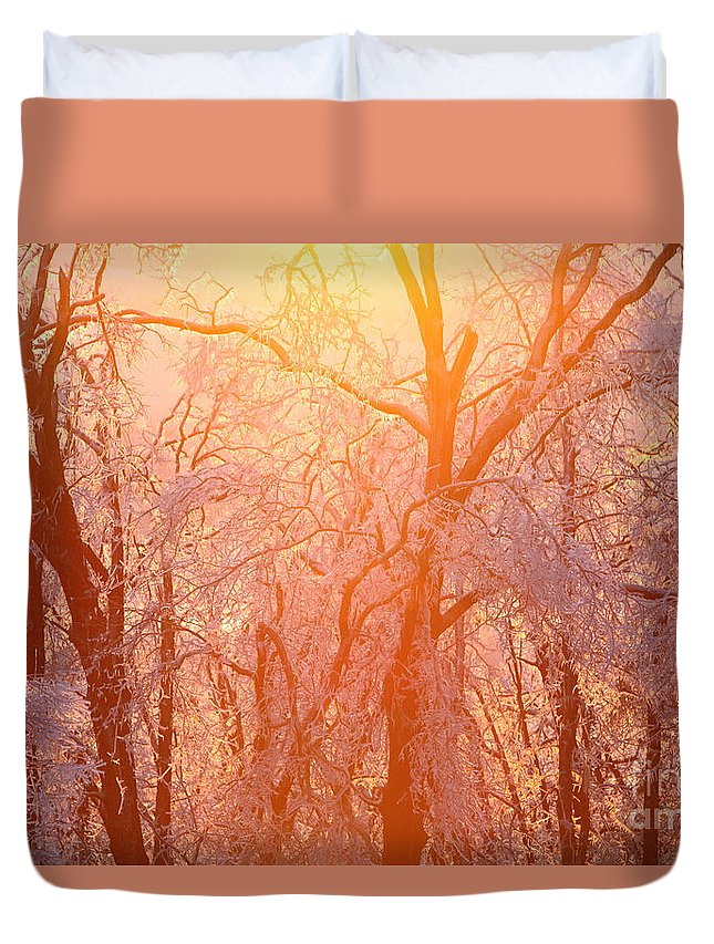 Pink Duvet Cover featuring the photograph Pink And Gold by Nadine Rippelmeyer