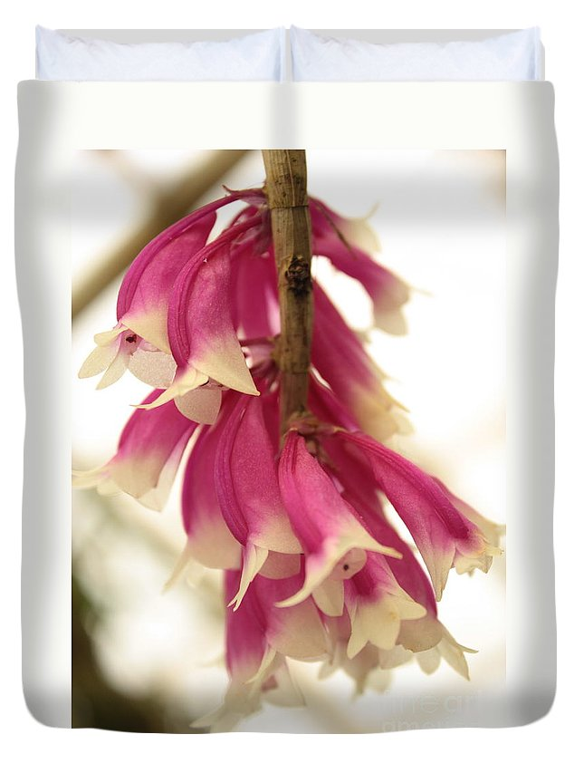Pink And White Flowers Duvet Cover featuring the photograph Pink And White Bells by Carol Groenen