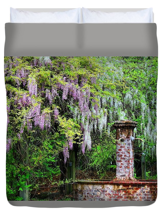 Pink And White Wisterias Duvet Cover featuring the photograph Pink And White Wisterias by Kathryn Meyer