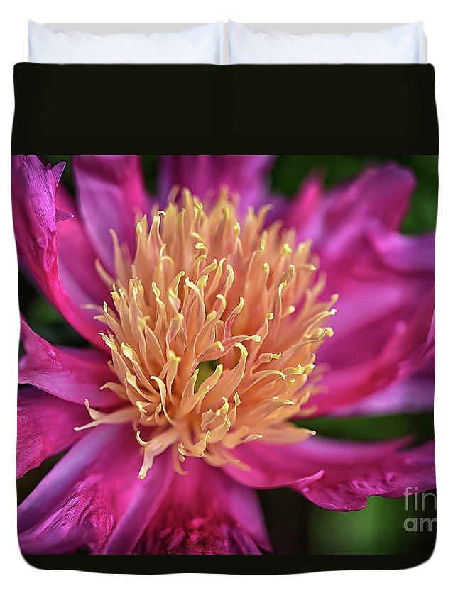 Peony Duvet Cover featuring the photograph Pink And Yellow Peony by Lois Bryan