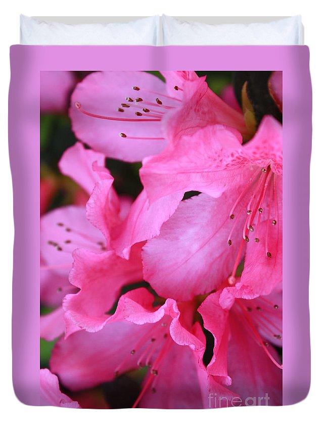 Pink Azaleas Duvet Cover featuring the photograph Pink Azalea Drama by Carol Groenen