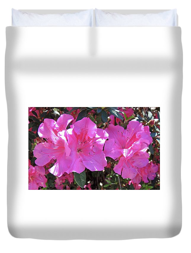Photography Duvet Cover featuring the photograph Pink Bevy Of Beauties by Marian Bell