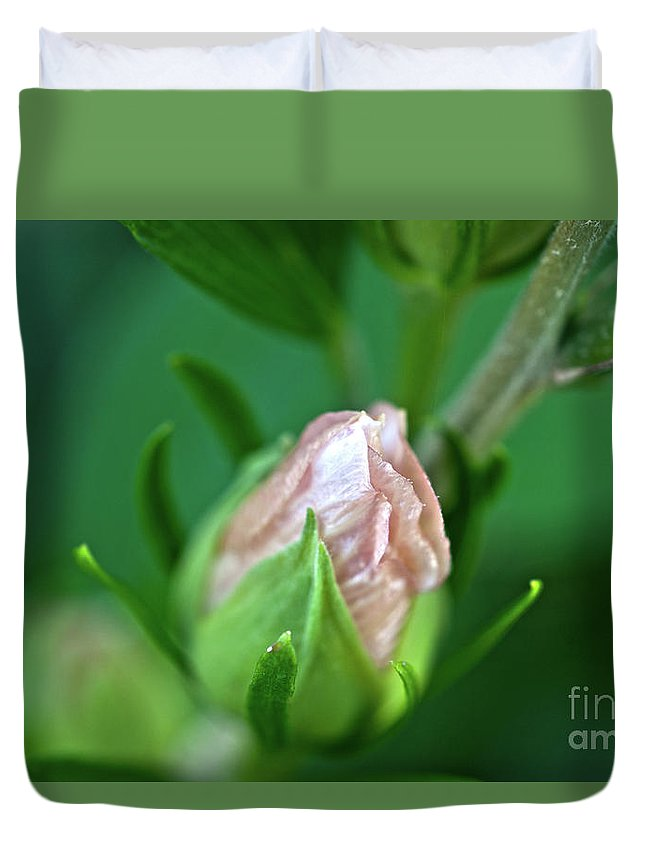 Bud Duvet Cover featuring the photograph Pink Bud by Crystal Harman