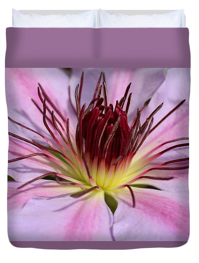 Clematis Duvet Cover featuring the photograph Pink Clematis Closeup by Kathryn Meyer