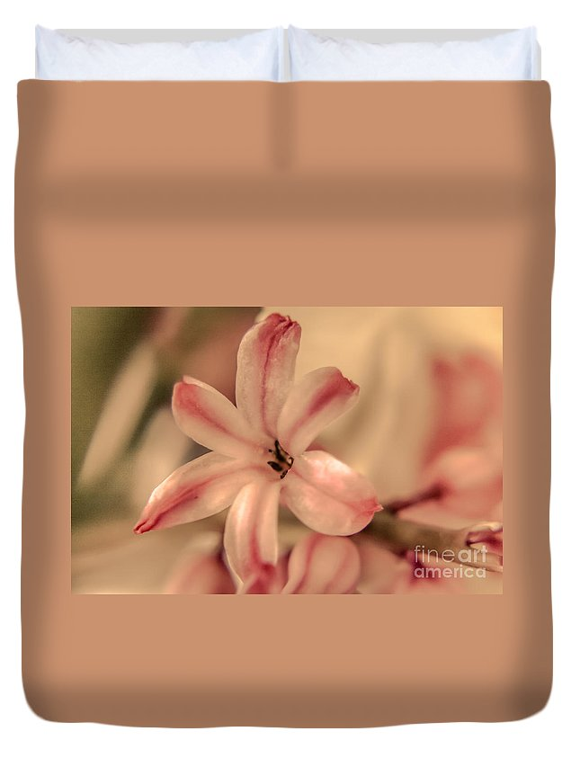 Spring Floral Duvet Cover featuring the photograph Pink - Close Up by Claudia M Photography