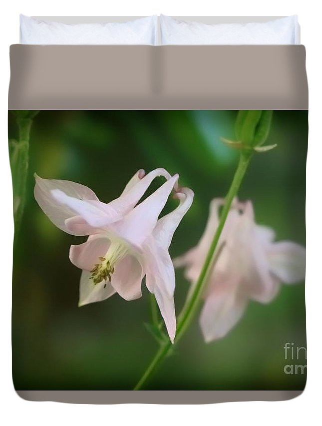 Abstract Duvet Cover featuring the photograph Pink Columbine by Elizabeth Dow