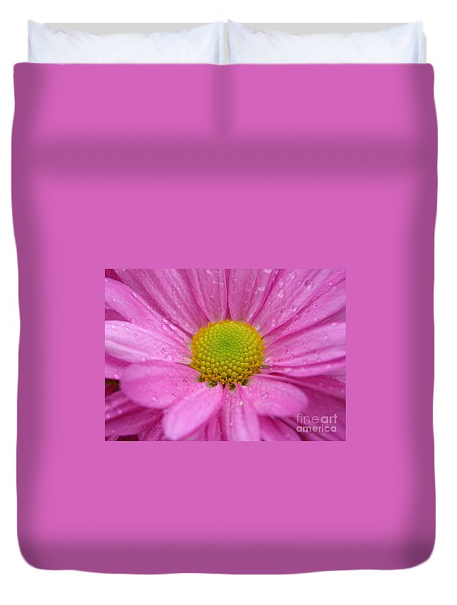 Pink Daisy Duvet Cover featuring the photograph Pink Daisy With Raindrops by Carol Groenen