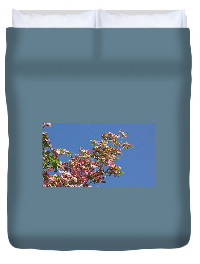 Tree Duvet Cover featuring the photograph Pink Dogwood by Sarah Houser