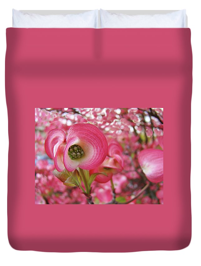 Dogwood Duvet Cover featuring the photograph Pink Dogwood Tree Flowers Dogwood Flowers Giclee Art Prints Baslee Troutman by Baslee Troutman