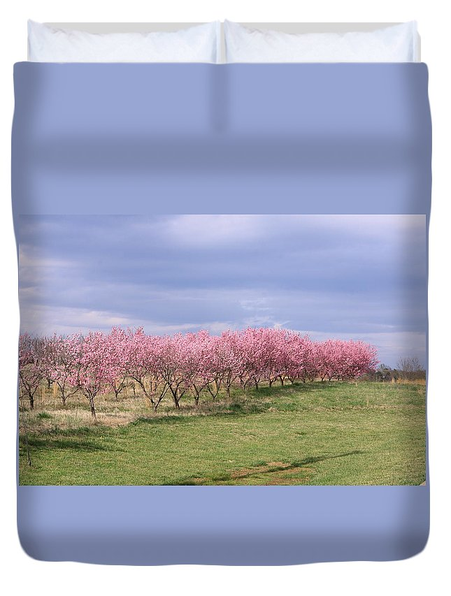 Pink Pears Trees Duvet Cover featuring the photograph Pink Pear Trees by Karen Ruhl