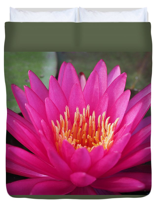 Waterlily Duvet Cover featuring the photograph Pink Flame Waterlily by Paula Ponath