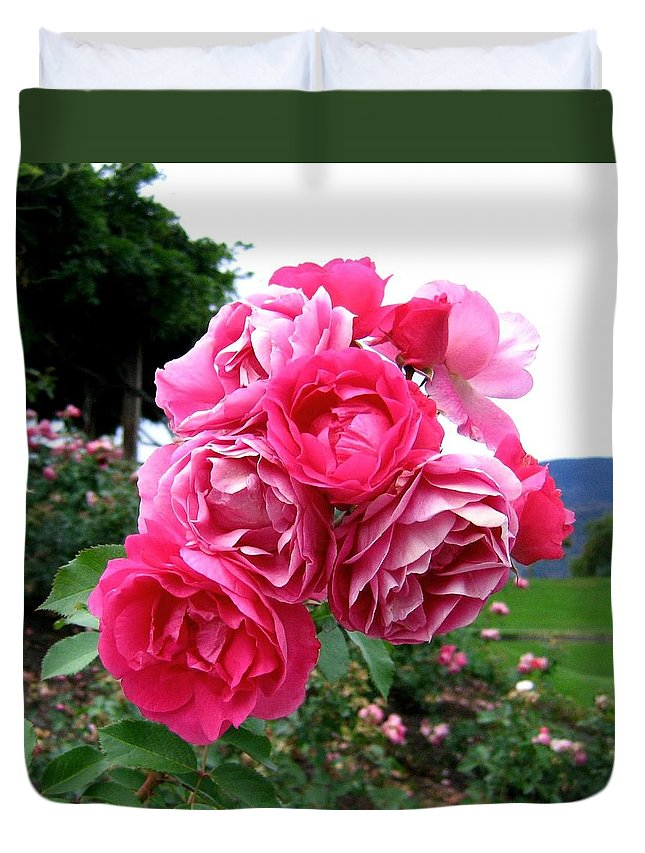 Roses Duvet Cover featuring the photograph Pink Floribunda Roses by Will Borden