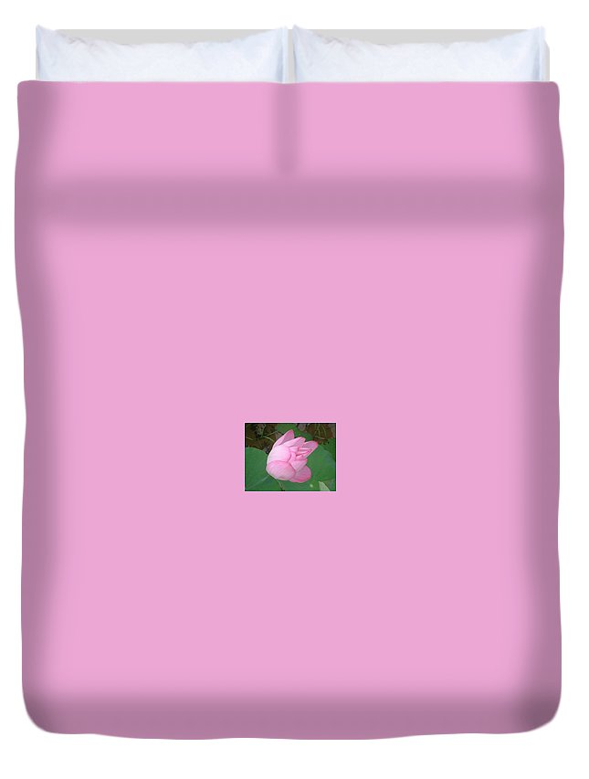 Flower Lily Duvet Cover featuring the photograph Pink Flower by Janet Giles