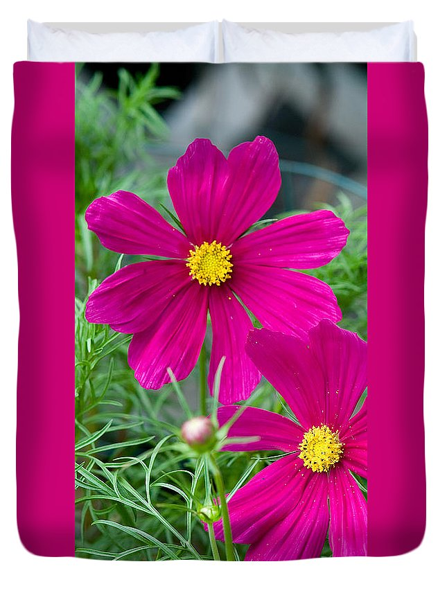 Pink Duvet Cover featuring the photograph Pink Flower by Michael Bessler