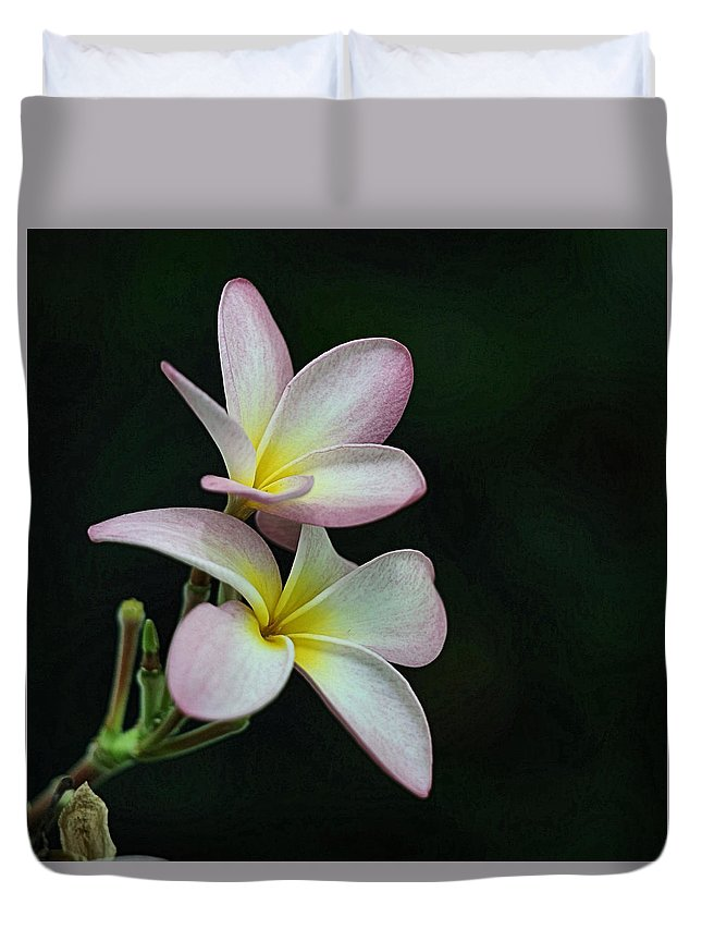 Flower Duvet Cover featuring the photograph Pink Flower by Tabitha Prichard