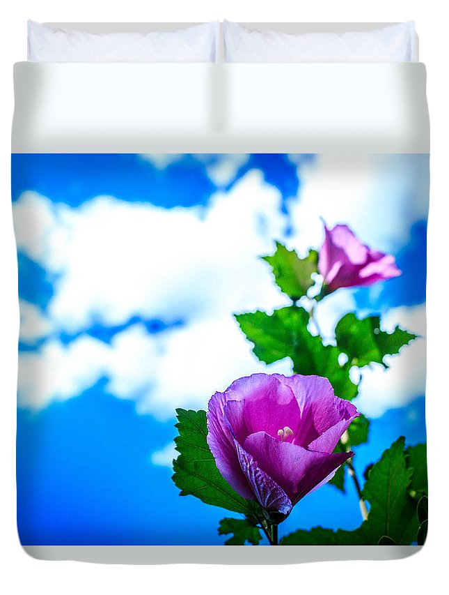 Pink Flowers Duvet Cover featuring the photograph Pink Flowers On A Blue Sky by Abe