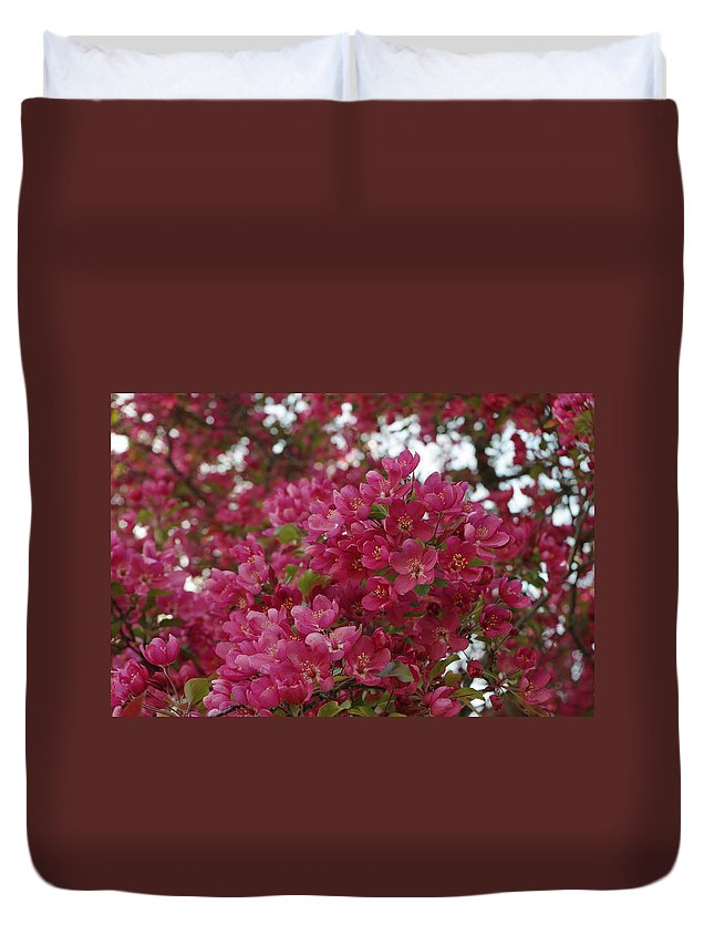 Pink Flowers Duvet Cover featuring the photograph Pink Flowers On Blooming Tree by Alice Markham