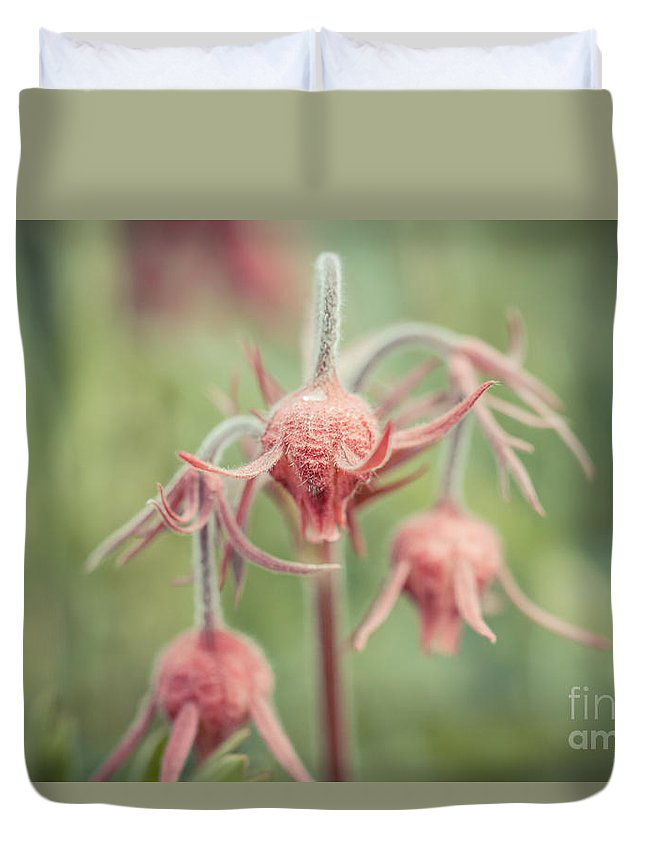 Colorado Duvet Cover featuring the photograph Pink Fuzz 2 by Ashley M Conger