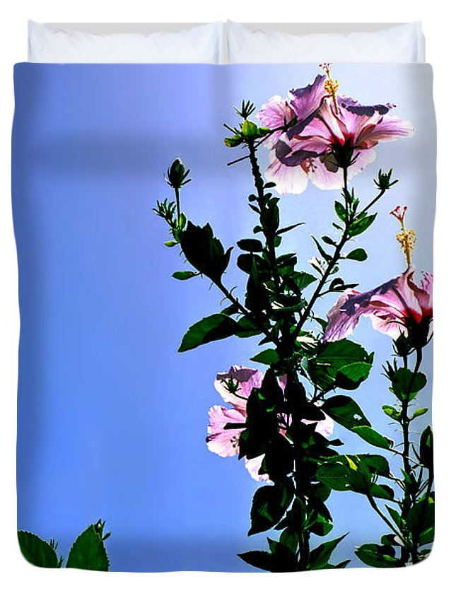 Hibiscus Hawaii Pink Backlit Green Foliage Leaves Tropical Flower Print Blue Sky Bright Midday Sun Duvet Cover featuring the photograph Pink Hibiscus by Kevin Smith