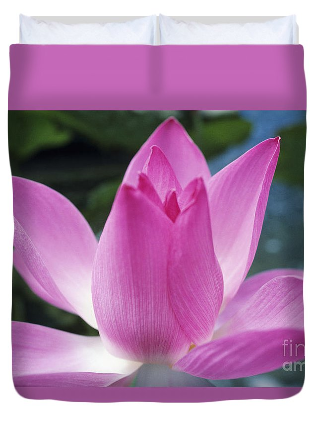 Beautiful Duvet Cover featuring the photograph Pink Lotus by Larry Dale Gordon - Printscapes