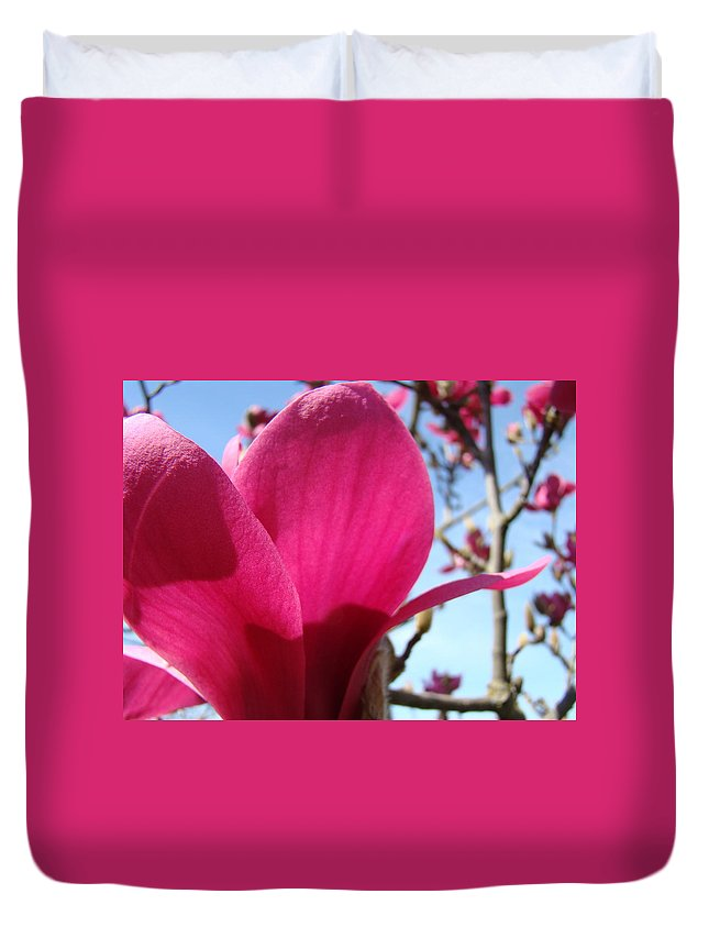 Magnolia Duvet Cover featuring the photograph Pink Magnolia Flowers Magnolia Tree Spring Art by Baslee Troutman