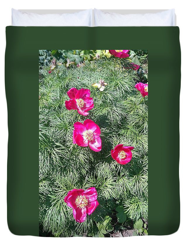 Pink Peony And Green Grass Duvet Cover featuring the photograph Pink Peony by Connie Du
