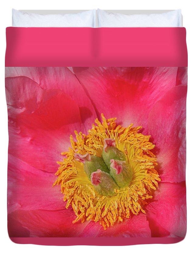 Pink Duvet Cover featuring the photograph Pink Peony Flower Fine Art by James BO Insogna